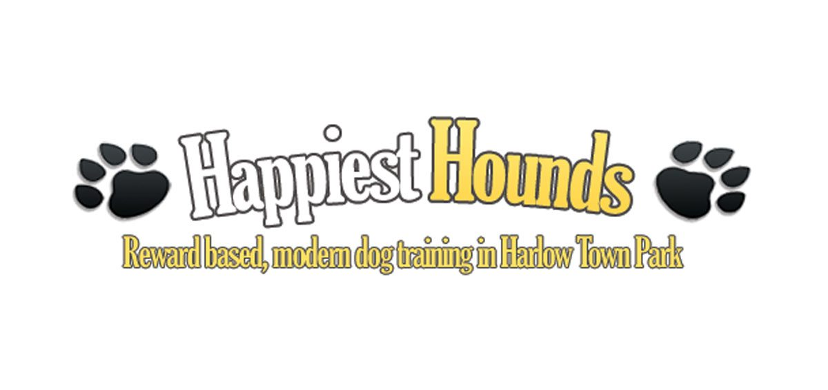 happiest-hounds